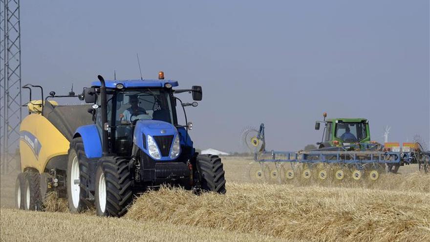 La FAO pide prácticas más sostenibles para asegurar la producción futura de cereal