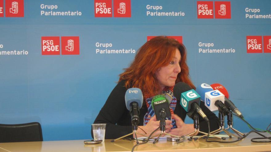 """El PSdeG censura el """"cinismo intolerable"""" de Feijóo por ir """"de moderado"""" tras legislar en favor de la Red Madre"""