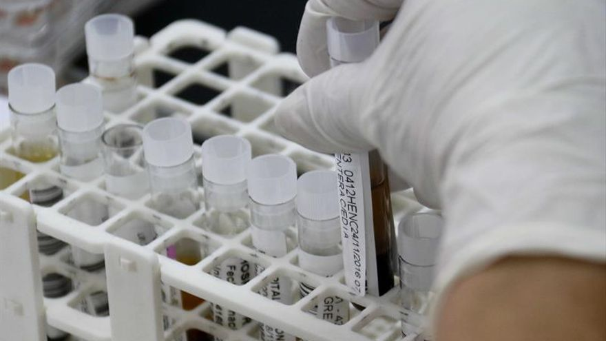 Científicos logran producir anticuerpos humanos específicos en laboratorio