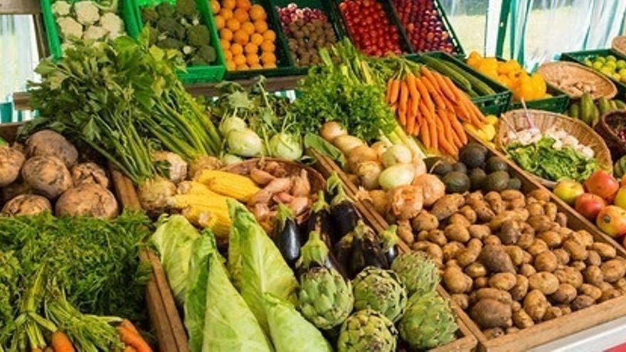 Ecologistas en Acción defiende una agricultura libre de glifosato