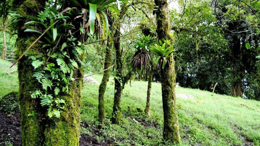La región de Madriz alberga un rico patrimonio ambiental y geológico / JCD