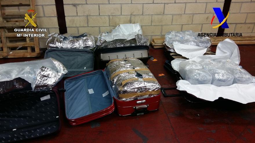 Incautados en el Aeropuerto de Bilbao 40 kilos de angulas ilegales vivas con destino Shanghái (China)