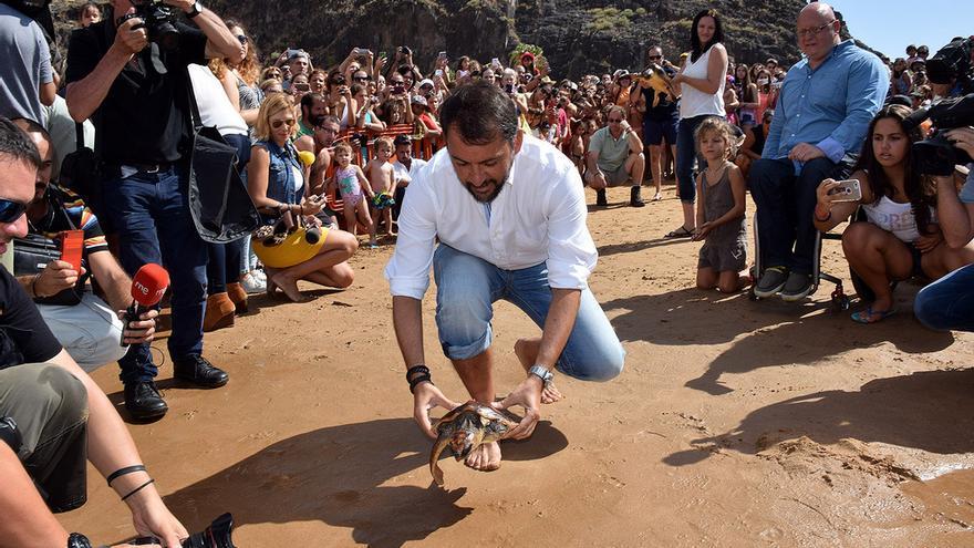 El alcalde José Manuel Bermúdez durante la suelta de tortugas en Las Teresitas