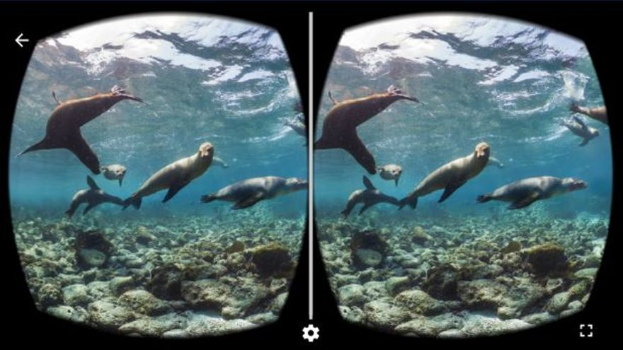 El fondo marino es uno de los destinos habituales de los alumnos de Costa de la mano de las Google Cardboard