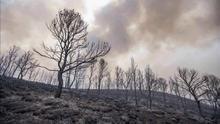 El incendio en Lorca ha podido estar provocado por un rayo