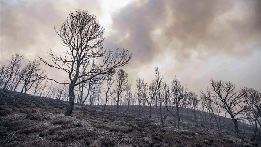 Se declara un incendio en Lorca (Murcia) por un rayo