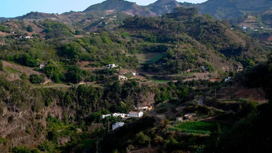 Barranco de Los Tilos de Moya, reducto de la Laurisilva grancanaria.