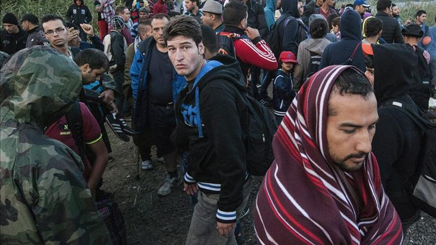 Inmigrantes cruzan la frontera entre Hungría y Serbia en Roszke (Hungría)