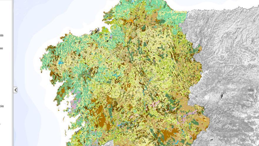 El eucalipto se extiende principalmente por las áreas costeras, tal y como muestra el mapa de usos del suelo de Galicia