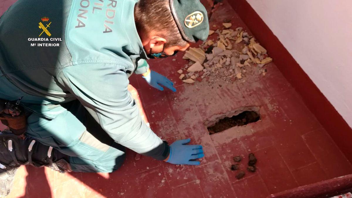 Un agente del Seprona investiga la muerte de murciélagos en Puente Genil.