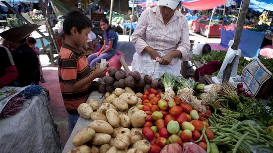 La agricultura familiar alimentará el planeta, según el Foro Rural Mundial