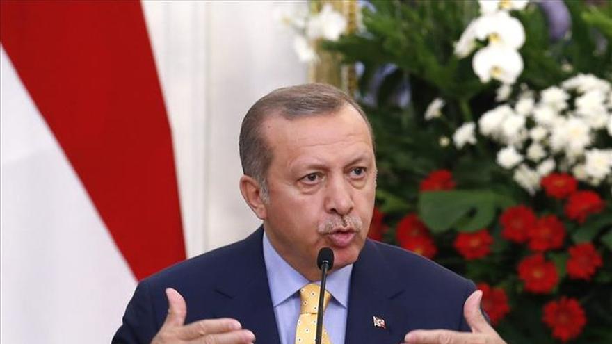 Erdogan quiere que el G20 discuta las soluciones a la guerra en Siria