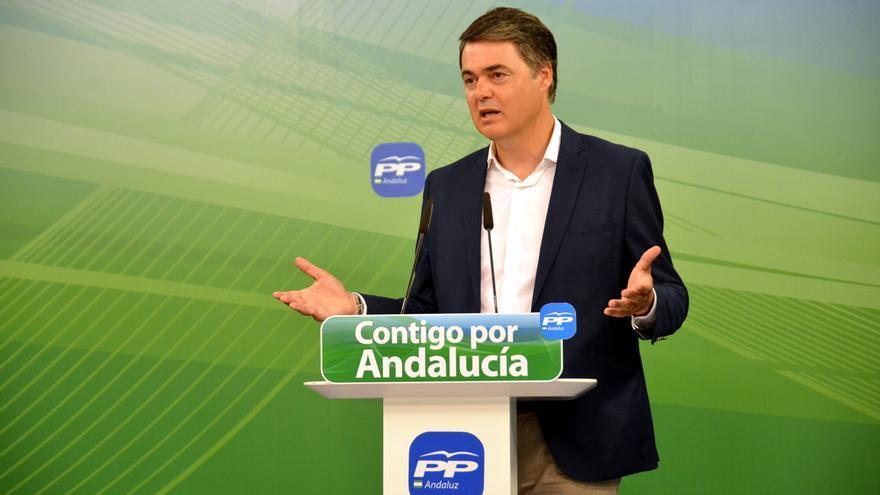 El portavoz parlamentario del PP andaluz, Carlos Rojas.