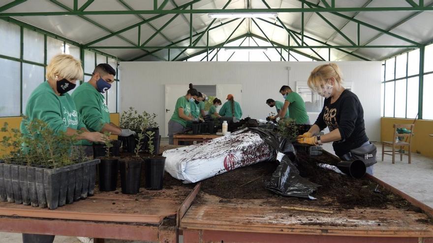 """La Confederación de Economía Social de Castilla-La Mancha se reivindica como motor de la recuperación: """"Nosotros no nos marchamos si las cosas van mal"""""""