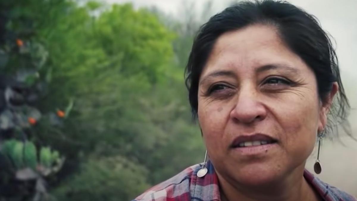 Deolinda Carrizo, la funcionaria campesina que quiere empoderar a las mujeres en sus tierras