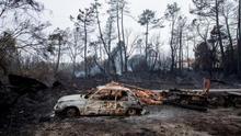 Europa pierde más de 12.000 millones de euros al año por desastres relacionados con el clima