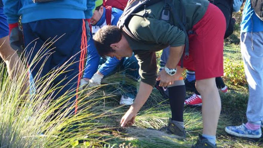 Alumnos IES de Villa de Mazo han realizado este viernes en Fuencaliente la primera de las tres actividades extraescolares previstas dentro del proyecto 'Territorio hostil'.