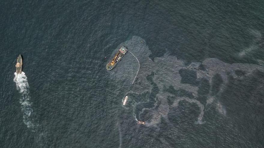 SEO urge la contención del vertido de fuel de la draga hundida en Suances que amenaza a dos aves marinas protegidas