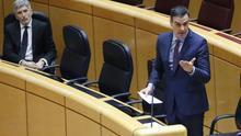 Pedro Sánchez durante la sesión de control al Gobierno en el Senado este martes.