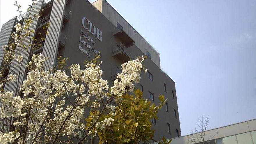 La cosmopolita Kobe busca ser epicentro de la innovación biomédica en Asia