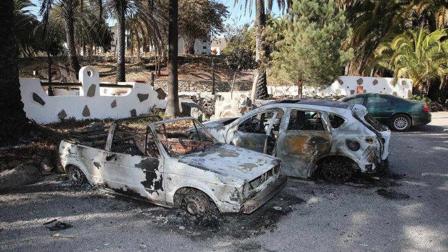 Así ha quedado el palmeral de Fataga tras el incendio declarado este sábado