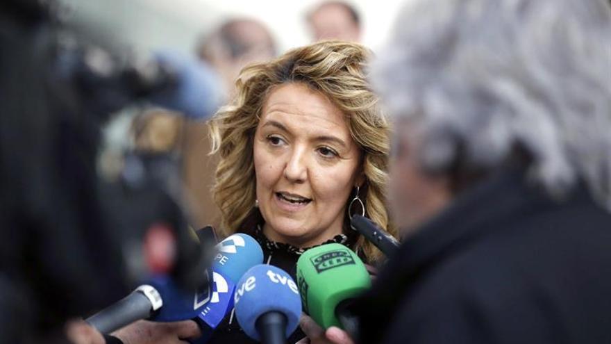 Mallada (PP): La transición energética de Sánchez condena a muerte a Hunosa