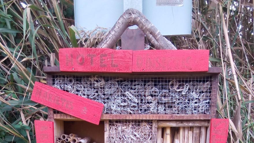 El primer hotel para insectos del Tancat de la Pipa