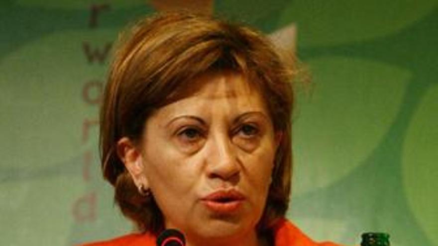 Espinosa afirma que las energías renovables son una fuente de empleo en un momento de crisis