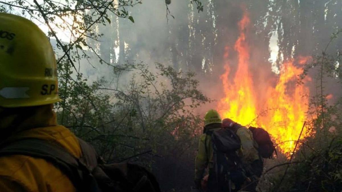 Brigadistas combaten los focos de incendio en Cuesta del Ternero