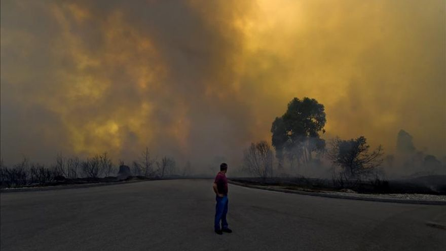 Un muerto en un incendio forestal en Portugal cerca de Extremadura