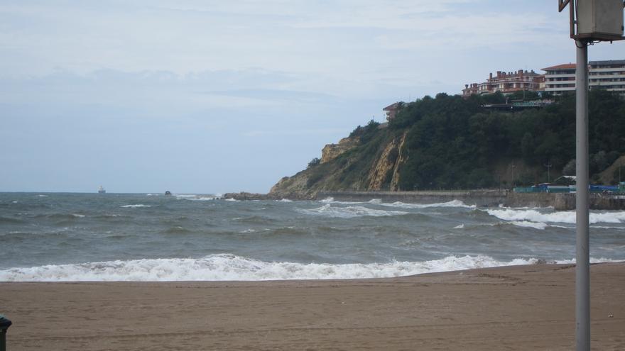 Retirados 500 kilos de pulpos muertos de la playa de Ereaga, en Getxo (Bizkaia)