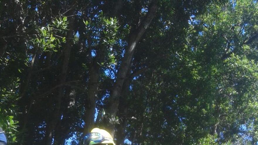 En la imagen, ejercicio de descenso con perros al hombro. Foto: AEA