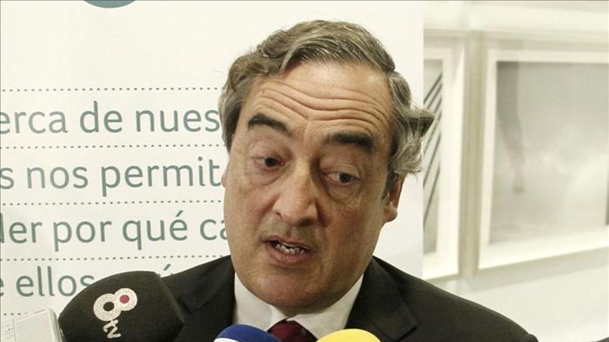 El presidente de la CEOE, Juan Rosell. EFE