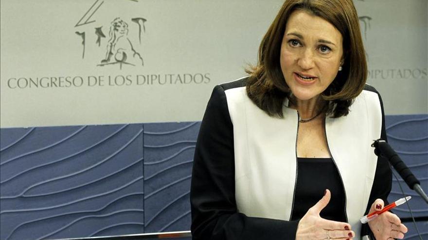 El PSOE recurrirá al Tribunal Constitucional el decreto de medidas urgentes