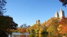 Los rascacielos emergen tras el 'fuego verde'; una de las imágenes habituales de Central Park. Amber