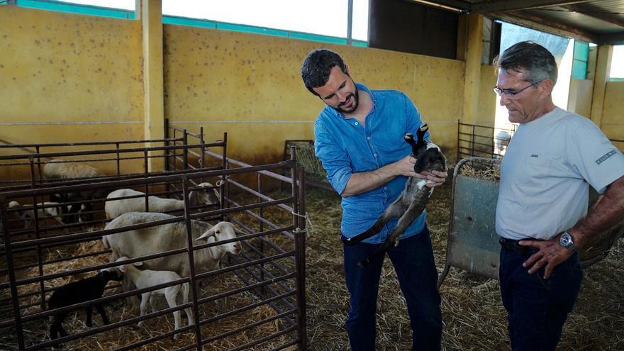 Pablo Casado, esta semana, durante una visita a la provincia de Almería.