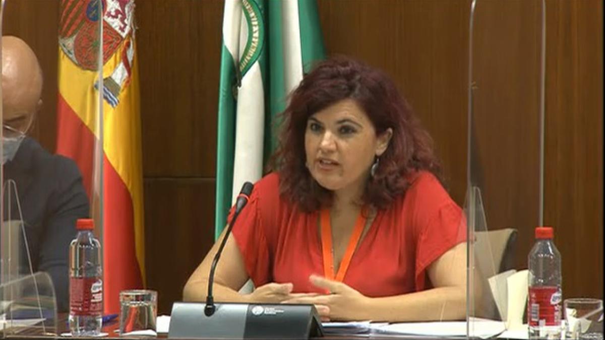 Antonia Rubio, durante su comparecencia en la Comisión de Políticas para la Protección de la Infancia en Andalucía