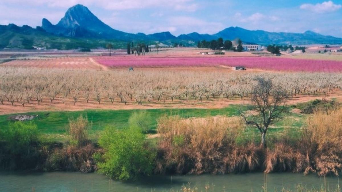 La Región de Murcia, en primavera