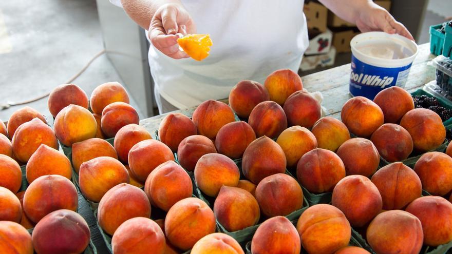 Albacete es la provincia más afectada de la región por la enorme bajada de precios de la fruta con hueso