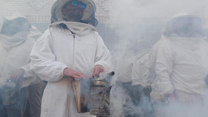 Los apicultores reclaman al Congreso un etiquetado claro para la miel