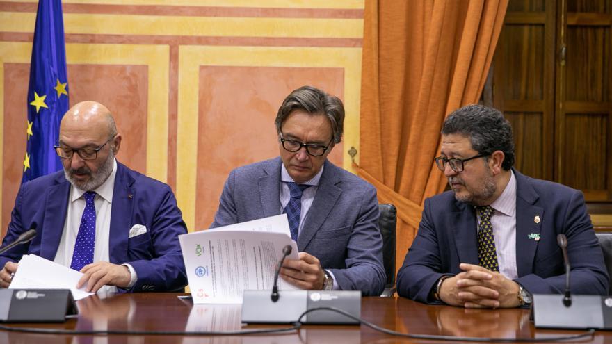 Firma del acuerdo presupuestario entre el Gobierno andaluz y el grupo parlamentario VOX