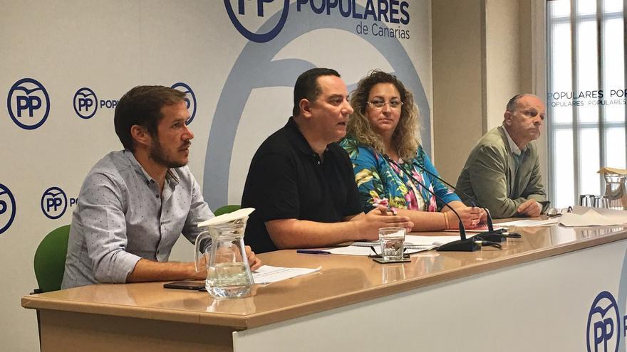Los senadores del Partido Popular de Canarias.