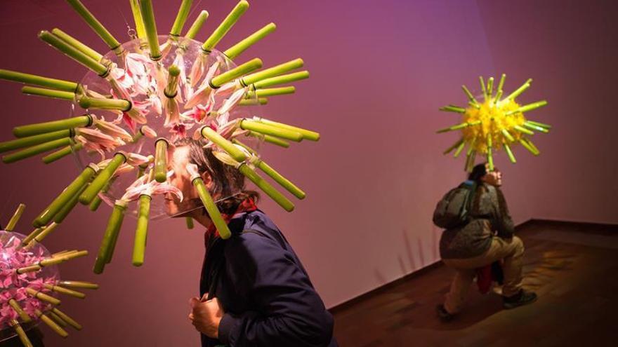La Fundació Miró abre un debate medioambiental con una exposición sobre las abejas