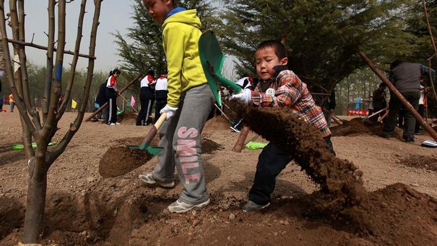 China estudia sus bosques de ciudad como lucha contra la contaminación