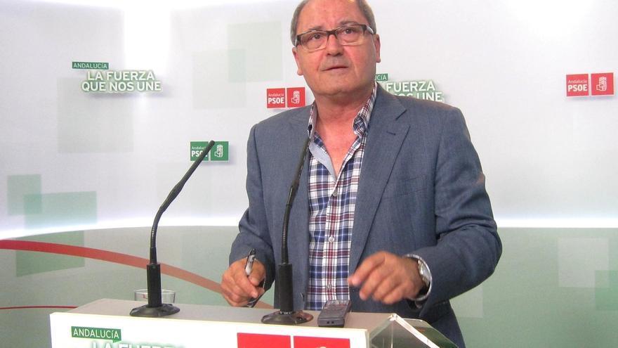 """PSOE-A reprocha a IULV-CA sus """"contradicciones"""" sobre caso de fondos de formación y le aconseja que resuelva su posición"""