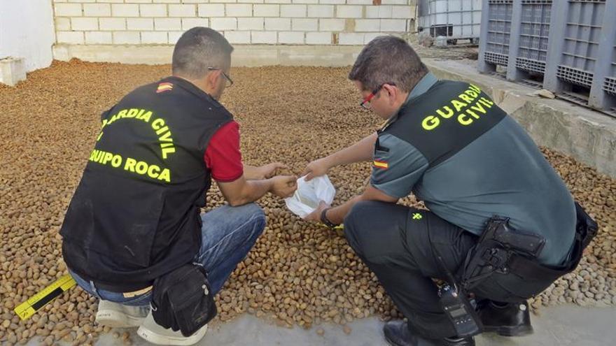 Detenidas siete personas por el robo y venta de 13 toneladas de almendras