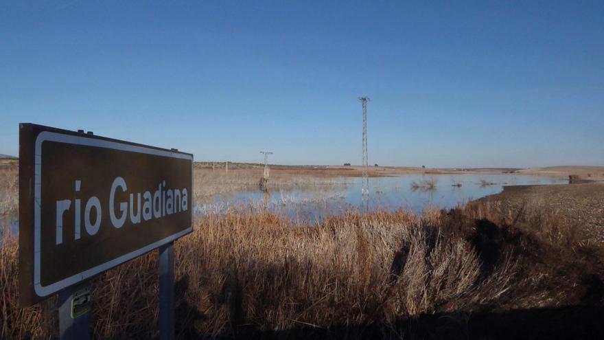 El Gobierno declara acuíferos Campo de Cartagena, Doñana y Daimiel en riesgo