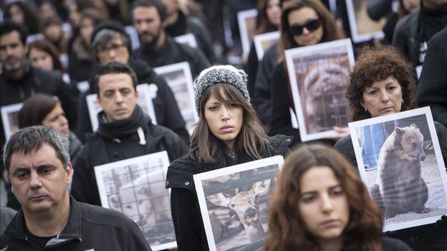 Fotografías de animales muertos para reivindicar sus derechos