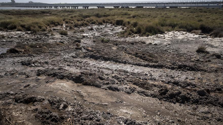 Vertidos en la Ría de Huelva. Greenpeace