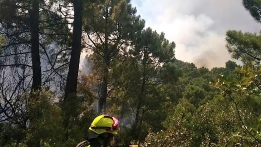 Imagen del incendio en Yeste (Albacete)